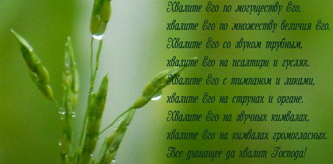 Псалом 150