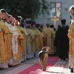 Собака и священники