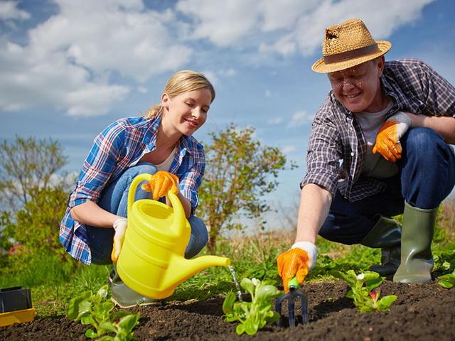 Работа в огороде