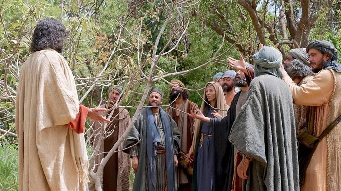 Христос проклял смоковницу